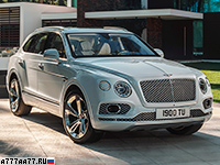 2019 Bentley Bentayga Hybrid = 270 км/ч. 462 л.с. 5.1 сек.